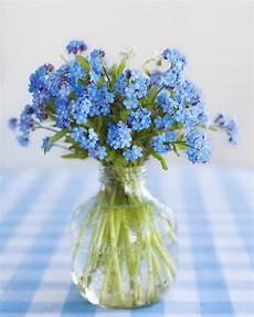 17 best images about forget me not bouquet no me olvides