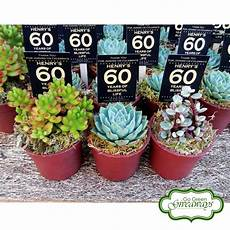 succulents giveaways for henry s 60th birthday bacolod philippines party giveaways 60th