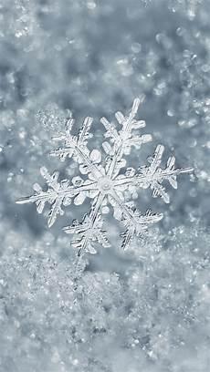 snowflake iphone wallpaper winter snowflakes wallpaper 42 images