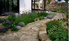 kräuter anpflanzen wohnung lavendel mit anderen pflanzen kombinieren lavendel