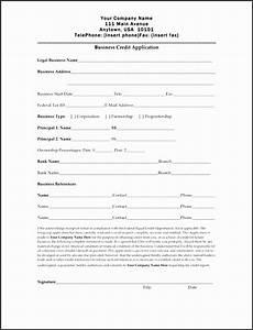 10 credit application template excel sletemplatess
