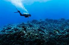 scuba diving 101 how to explore a new world columbia blog