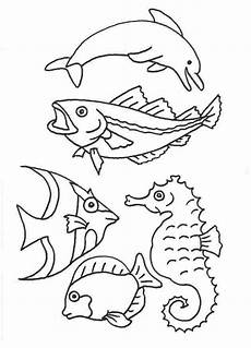 Ausmalbilder Meerestiere Zum Ausdrucken Fische Schablonen Ausdrucken Malvorlagentv