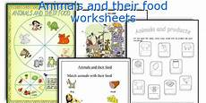 worksheets with animals and their food 14086 animals and their food worksheets