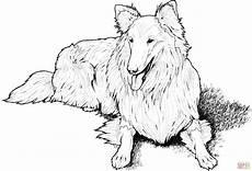 Ausmalbilder Hunde Border Collie Coloriage Colley Coloriages 224 Imprimer Gratuits