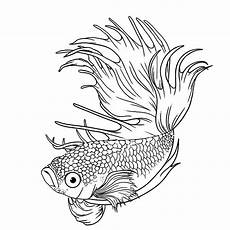 Gambar Mewarnai Ikan Cupang Hias Dan Laga Lucu Untuk Anak
