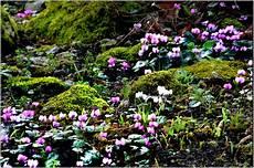 Besucherfoto Februar 2016 Botanischer Garten