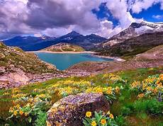 Flower Valley Wallpaper by Actresses Hd Wallpapers Beautiful Valley Hd Wallpapers