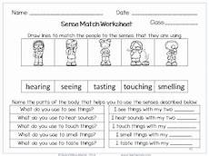 the five senses worksheets for grade 1 12573 nyla s crafty teaching the five senses worksheets activities and posters