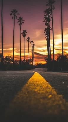 Tree Wallpaper Iphone 11 1080x1920 sunset road scenic trees