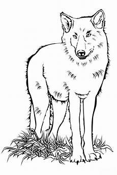 gratis malvorlagen wolf