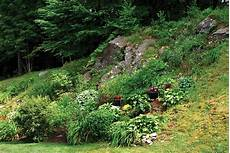 steilen hang bepflanzen lessons from the gardening on rocky and steep