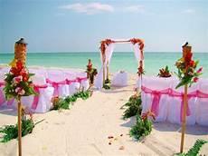 florida beach wedding with aquarium reception