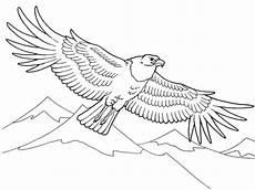 Ausmalbilder Zum Ausdrucken Adler Adler Ausmalbilder Ausdrucken Malvor