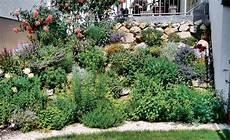 Garten Gestalten Pflegeleicht Amilton