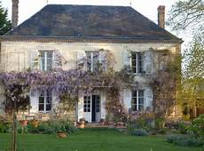 Wisteria Blooming And Fragrant My Country Home