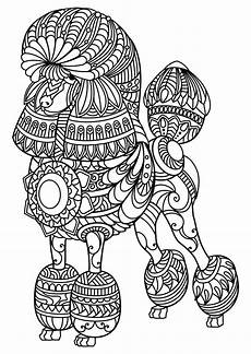 animal coloring pages for adults free 17296 animal coloring pages pdf farm animal coloring pages coloring page coloring pages