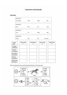 food chains and food webs worksheet doc animal food chains food web worksheet food chain