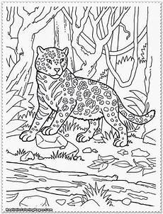 animal coloring pages for free 17293 malvorlagen fur kinder ausmalbilder dschungeltiere kostenlos page 2 of 10 konabeun