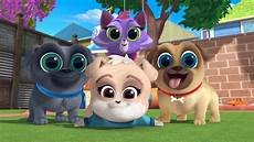 puppy pals wallpaper a new pup in town the last pup icorn