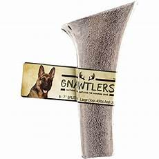gnawtlers premium split elk antlers for dogs naturally