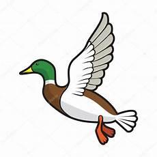 vol de canards colverts couleur image vectorielle
