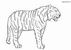 Malvorlagen Tiger Malvorlagen Tiger Kostenlos