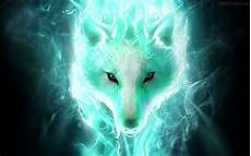 cool green wolf wallpaper 64 neon wolf wallpapers on wallpaperplay