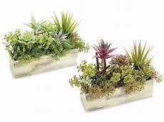 piante grasse in vaso composizione di piante grasse artificiali decorative in