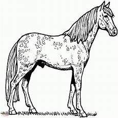 Malvorlage Pferde Turnier Ausmalbilder Pferde Turnier Einzigartig 30 Frisch
