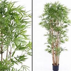Deko Bambus Mit 1450 Bl 228 Ttern Schwer Entflammbar 150 Cm