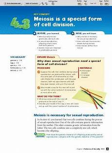 biology section 11 4 meiosis worksheet answer key briefencounters
