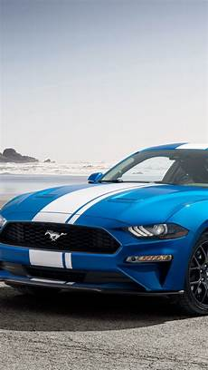 Wallpaper Mustang Blue Car by Wallpaper Ford Mustang Car Blue 2019 Cars 4k