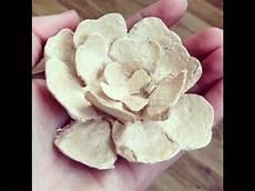 Blumen Aus Einem Eierkarton Basteln