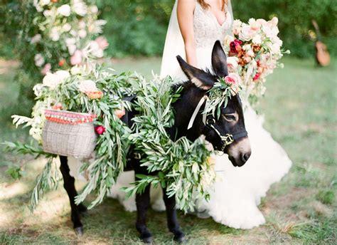 Dunkey Wedding
