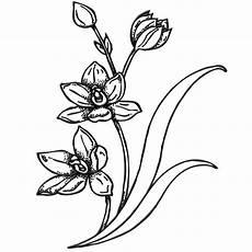 Gambar Pola Bunga Harian Nusantara