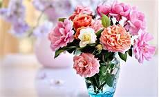 Gambar Wallpaper Bunga Untuk Hp Gudang Wallpaper