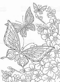 Malvorlage Schmetterling Mit Blume Stylized Butterfly And Flower