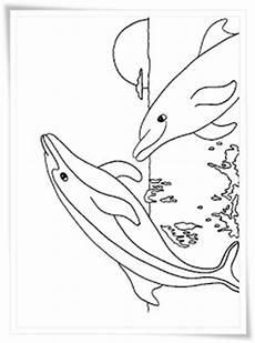 Malvorlagen Kostenlos Delfine Ausmalbilder Zum Ausdrucken Ausmalbilder Delfine Kostenlos