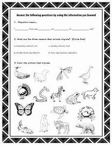animal migration worksheets 14057 migration science worksheet study ppt animal migration