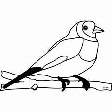 Malvorlage Vogel Zum Ausdrucken Kostenlose Malvorlage Tiere Ausmalbild Vogel Zum Ausmalen