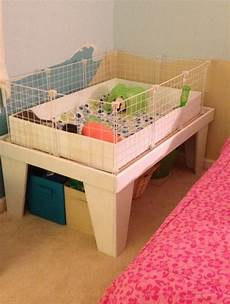 guinea pig house plans awesome ideas for guinea pig hutch and cages luxy home