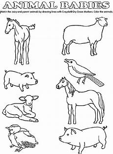 farm animals and their babies coloring pages 17434 baby animal match coloring page crayola