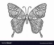 butterfly coloring book for adults royalty free vector image