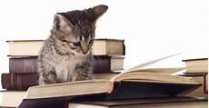 installer une chatière comment installer une chati 232 re node vocab 3 term