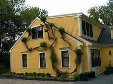 15 cape cod house style ideas and floor plans interior exterior