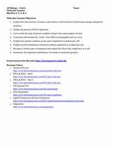 gene regulation and expression worksheet answers free printables worksheet
