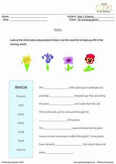 plants worksheets for primary 13486 56 best science printable worksheets primaryleap images on