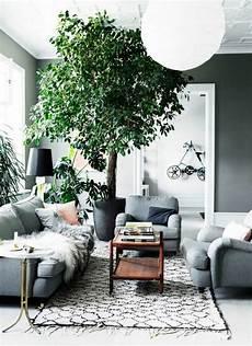 pflanzen deko wohnzimmer mit zimmerpflanzen das zuhause dekorieren 60 beispiele