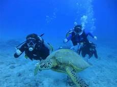 hawaii scuba diving padi certification honolulu scuba